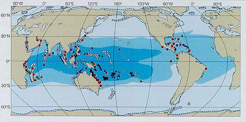 サンゴ白化の分布図